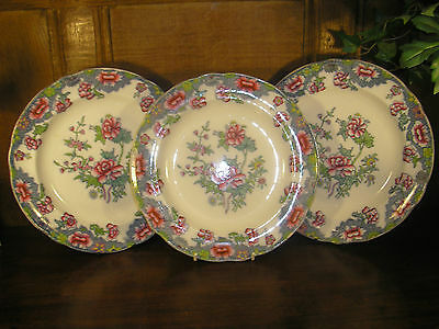 ANTIQUECopeland Late Spode SET of 3 HAND DECORATED DINNER PLATES - 26cms