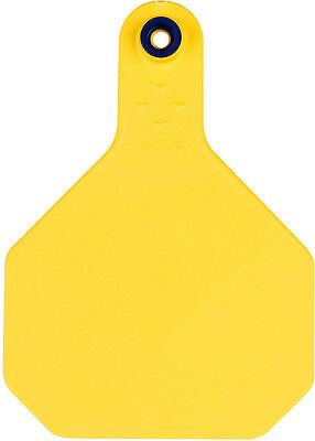 Y-Tex Blank Large Cattle ID Ear Tags Yellow 25 ct
