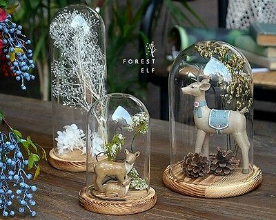Glass Display Cloche Bell Jar Dome With Wooden Or Glass Base DIY Many Sizes