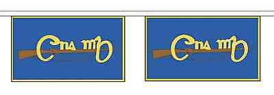 Ireland Cumann na mBan Horizontal Polyester Bunting - 9m long with 30 Flags