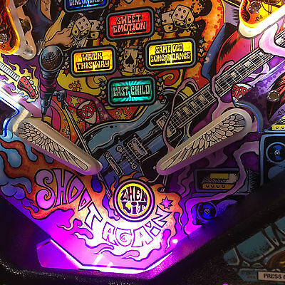 Metallica/Medieval Madness Pinball trough light