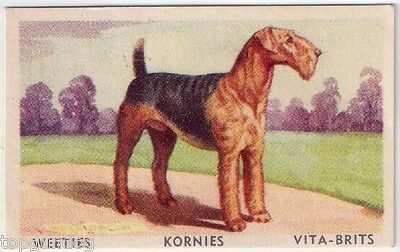 Airedale Terrier Dog Australian Cereal Card 1949