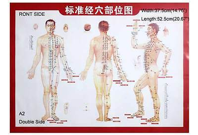 Meridians and Acupoints Chart Points Map For Moxibustion Therapy A2 Size
