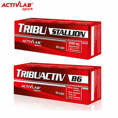 TribuStallion 60Caps + Tribuactiv B6 60Cap Testosterone Booster Hormone Support