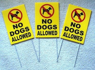 """(3) NO DOGS ALLOWED Coroplast Signs with Stakes 8""""x12"""" New yellow"""