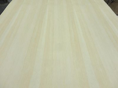 """Pine White wood veneer 24"""" x 48"""" with paper backing 1/40th"""" thickness """"A"""" grade"""