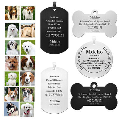 Custom Engrave Microchipped Personalized Pet Dog Cat ID Tags-Name Address Number