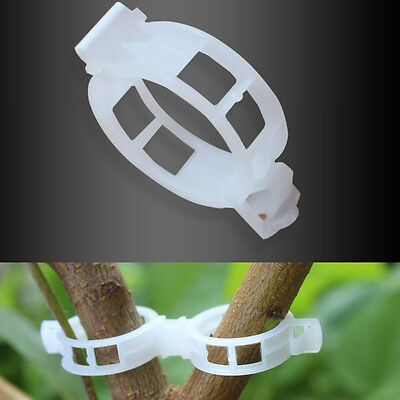 New White 20Pcs Plant Support Clips Vine Vegetables plants Hanging Orchid Clips