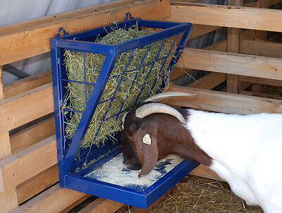 Combination Feeder for Goats