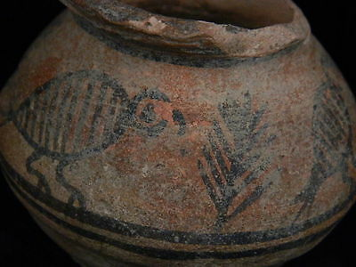 Ancient Teracotta Painted Pot With Birds Indus Valley 2500 BC  #PT15368