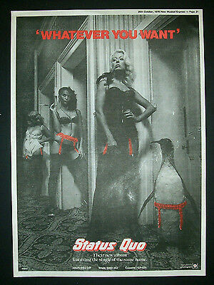 Status Quo Whatever You Want 1979 Poster Type Advert, Promo Ad