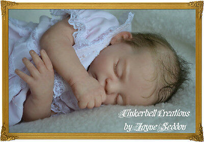 TINKERBELL CREATIONS REBORNING BABY DOLLS with Jayne Seddon LEARN TO REBORN DVD