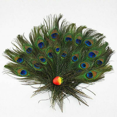Peacock Feathers 50 Small Natural Peacock Tail Eye Feathers