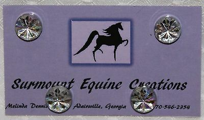 Horse Show Number Magnets - Clear AB Starburst - Saddleseat, Hunt Seat, Western