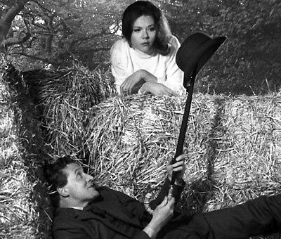 Patrick MacNee and Diana Rigg UNSIGNED photo - 429 - The Avengers
