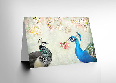 Card Greeting Peacock Flower Birds Blossom Gift Cl1716