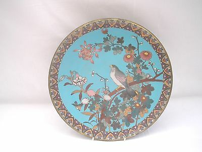 ANTIQUE Japanese CLOISONNE MEIJI FLORAL/BIRD CHARGER (D) - 12""