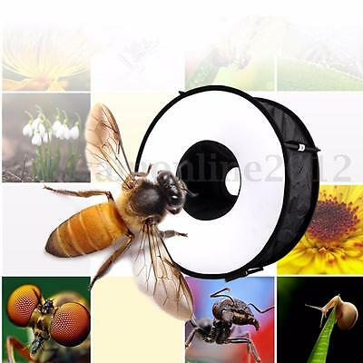 45cm Magnetic Easy-Fold Macro Ring Circular Round Softbox Speedlite Flash Light