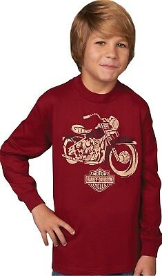 Harley-Davidson Sweater Motorized