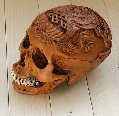 1:1 Medical Realistic LifeSize Human Egypt Skull Replica Resin Model Brown