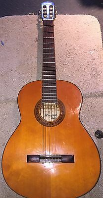 Vintage Mansfield Acoustic guitar 1970's Hoshino - Gakki (Ibanez)  Made in Japan