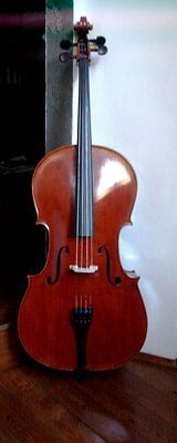 Cello advanced student to professional quality instrument
