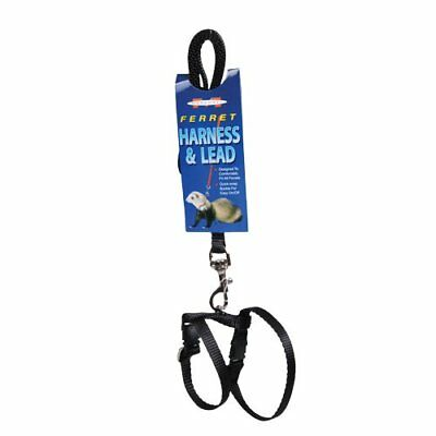 Marshall Harness & Lead Set - Black