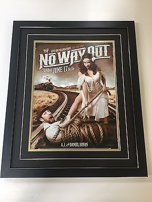 WWE Wrestling Professionally Framed Poster - 57cm By 47cm - No Way Out