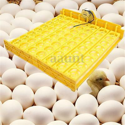Automatic 56 Chicken Egg Incubator Turner Tray Quail Duck With 110V/220V Motor