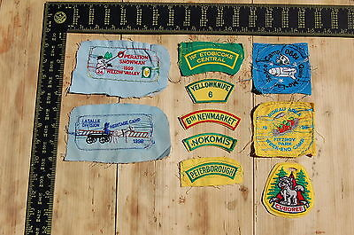Lot of 10 Wolf Cubs Canada RARE Vintage Sample Patches/Badges #11