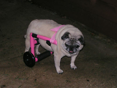Dog Wheelchair/Comes Ready To Go! Great For Pugs!! 10-35lbs