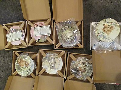 Set 7 Kitten Classics Decorative Plates Royal Worcester
