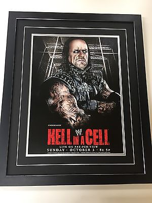WWE Wrestling Professionally Framed Poster - 57cm By 47cm - Hell In A Cell