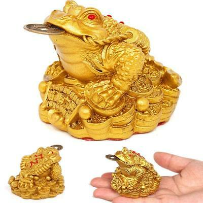 Feng Shui Ornament Toad Money Lucky Oriental Chinese Wealth Frog Toad Coin