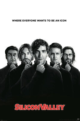 SILICON VALLEY Poster - TV Series Full Size 24x36 Print - Mike Judge
