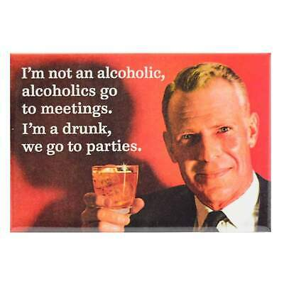 Not An Alcoholic Fridge Magnet Funny Decor Retro Novelty Gift Kitsch Humour