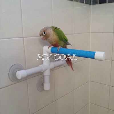Pet Birds Suction Cup Toys Paw Grinding Stand Bath Shower Perches Parrot Fashion
