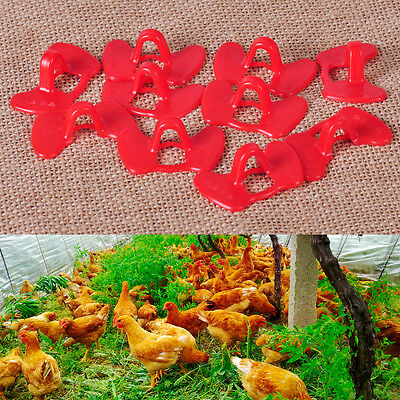 10xPlastic Creative Chicken Eyes Peeper Glasses Spectacles Protector Hen Pecking