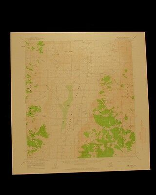 Mt Tobin Nevada vintage 1963 original USGS Topographical chart