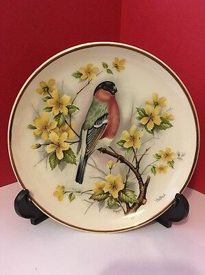 Very Rare Prinknash Pottery 17cm Decorative Display Plate of a Bullfinch bird