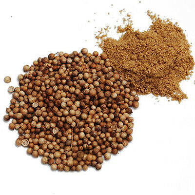 Coriander - Coriandrum Sativum - Dhania - Cilantro - 4 kg - Wholesale Supplyist
