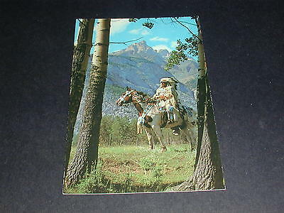 The Canadian Indian Canada Postcard