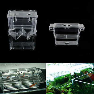 Aquarium Fish Tank Hatchery Breeding Young Fish Incubator Isolation Shrimp Box