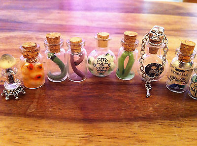 Dolls House Witch/wizard Potion Bottles X 1