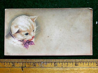 1870s-80s Lovely White Cat With Bow Kitten Cats Victorian Trade Card F24