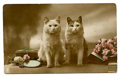 Image result for vintage cats