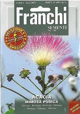 Franchi Seeds Acacia mimosa Pudica seeds