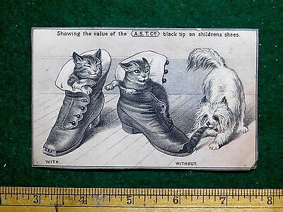 1870s-80s Cute Cats Sleeping In Shoes & Dog A.S.T. Co Black Tip Shoes Card F28