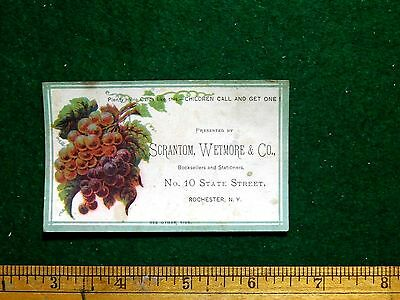 1870s-80s Lovely Bunch Of Grapes Scranton, Wetmore & Co Victorian Trade Card F28