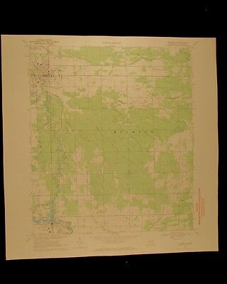 Gladwin Michigan vintage 1971 original USGS Topographical chart